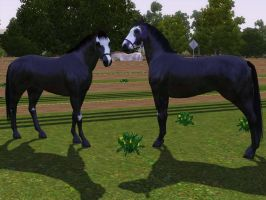 Sims 3 Horse Marking Download: OveroSet1 by Isolated-Design