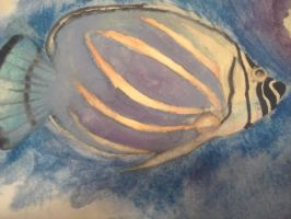 Close up of my watercolor fishy by saxoncote