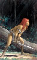 Red Sonja by fluidgeometry