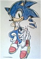 Sonic posed-Colored pencil by DarkS8728