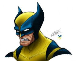 Wolverine Sketch Coloured by DeathRattleSnake