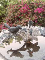 NV-Stock_BirdBath2 by NV-Stock