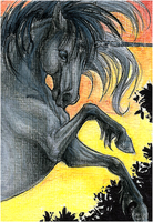 ATC.::.Dark Unicorn by WhiteSpiritWolf