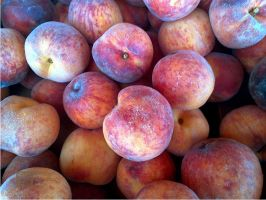 Peaches from Apple Hill by Zoxesyr