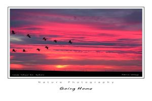 Going home by godintraining
