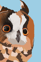 WIP Long eared owl by TeezGeez