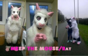Meep the Mouse/Rat by HandsterButtonz