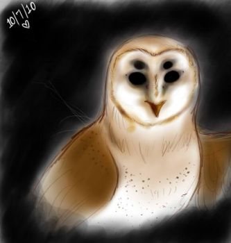 Owl Painting...doodle...sketch by Zombietastic