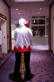 White Mage at Anthrocon 2011 by dmuth