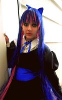 Stocking Anarchy by SunshineAlways