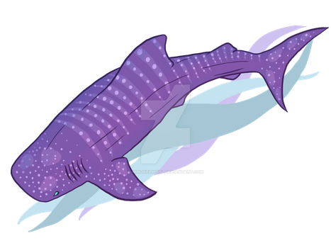 Whale Shark by WindhelmGirl