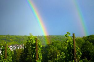 Double Rainbow Close Up by thenata