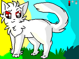 Cloudtail[RP] by Sparkylovecupcakes
