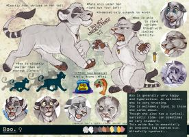 Boo Reference Sheet 2013 by BooYeh