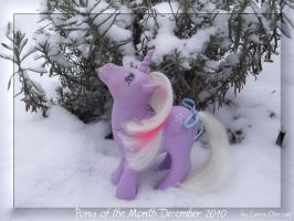 Pony of the Month Dec. 2010 by LarraChersan