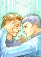 PSC - Reboot Kirk and Spock by aimo