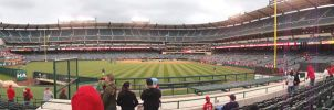 Angel Stadium View Left Field by Anime-Ray