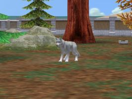 Zoo Tycoon2: Kiba by Caneage