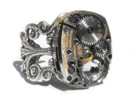 Another steampunk ring by JLHilton