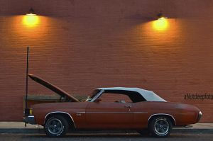 2 lights for a Chevelle SS by Nutdeep