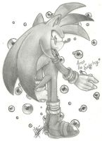 ~ Ares the hedgehog ~ by ClassicMariposAzul