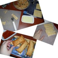 Homemade Egg Rolls by kayanah