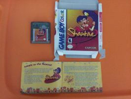 My Copy of Shantae!! by DmanB