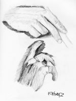 Hands: Series 4 by TheSpazOutLoud