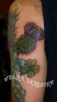Clover and Thistle -Arm Tattoo by lemaster99705