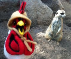 Felted Chicken Head at the Zoo! by AlwaysSuagarCoated