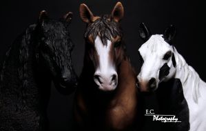 Schleich Horses Group Photo by Larafan2