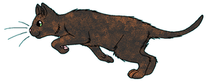ThunderClan - Larksong by WildpathOfShadowClan