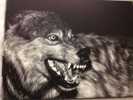 Wolf Scratchboard by pillowpet1997