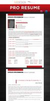 Professional Resume Template by andre2886