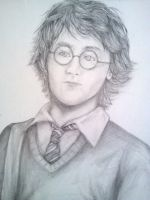 Yer a Wizard, Harry! by marissa287
