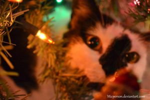What's Under the Tree? by micperson
