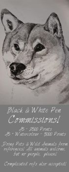 Black and White Pen Commissons! [Points!] by patchesthepheonix