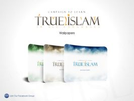 True Islam Campaign Wallpapers by vet-elianoor
