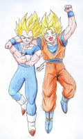 Gokou and Vegeta 1 by hirokada