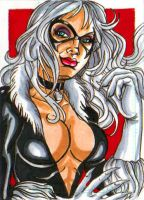Black Cat PSC by Tonioart