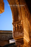 Patio de los Leones, Alhambra, Granada, Spain by Tiemen-S
