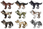 Canine Adopts - OPEN - LOWERED PRICE by ChaosAngel1111