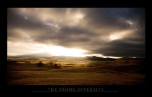 The Bromus Invasion by MountainPsyche