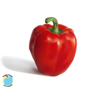 Red Bell Pepper by Rainbow-Pastel