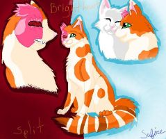 Brightheart's sides by safirethedragon