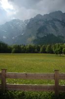 Fenced Meadow by Saktoth