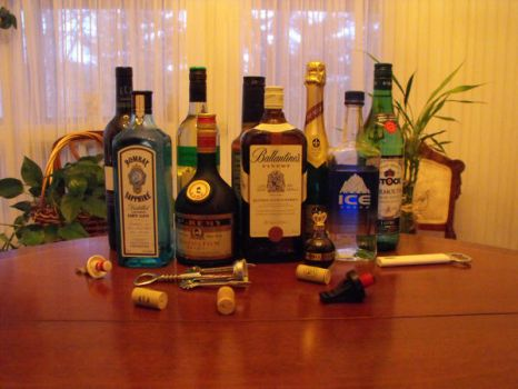 Alcoholic Beverages 1 by hahafunny827