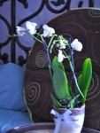 The White Ghost Orchid by libertine1182