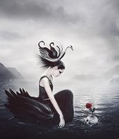 Black Swan by Mysterykids