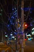 Christmas on the Street by shutterbuggery